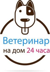 Vetspb24.ru